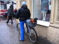 велосипедист с 2 кучета
